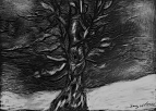 Winter Tree, scratchboard, 5 x 7 in., 2013
