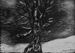 "Winter Tree, scratchboard, 5""H x 7""W, 2013"