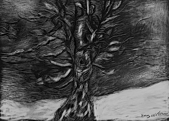 "Winter Tree, scratchboard, 5""H x 7""W"