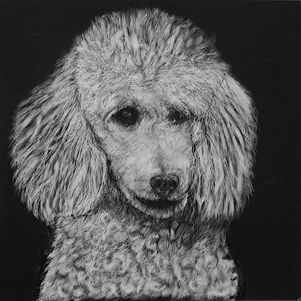 "Cloud, scratchboard, 8"" x 8"" (sold)"
