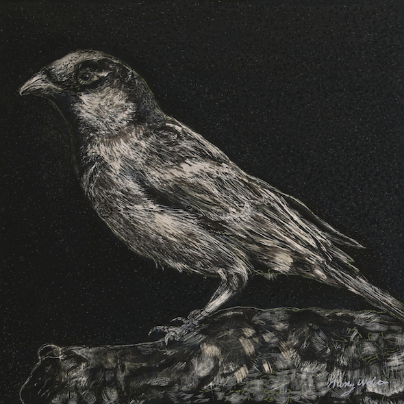 """On Vacation, scratchboard and ink, 5"""" x 5"""", 2015"""