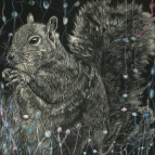 Memories of a Squirrel, scratchboard and ink, 8 x 8 in., 2016